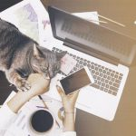 💣 Conseils d'expert pour avoir des revenus passifs | devenir promoteur | Test complet 2020