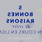 Découvrir: Podia formation en ligne brio - Se Former